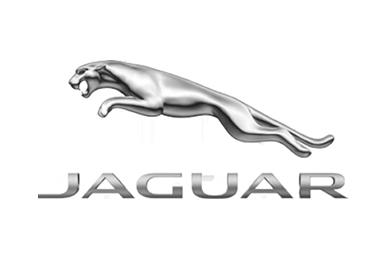 jaguar classic radio